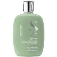 Alfaparf Scalp Renew Energizing Low Shampoo